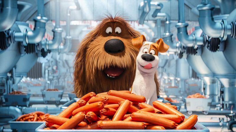 """Кадр из мультфильма """"Тайная жизнь домашних животных"""""""