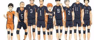 """Постер аниме """"Волейбол!!"""""""